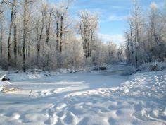 Cottonwood Park, Prince George,BC
