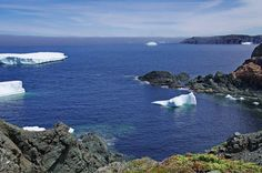 Twillingate, Newfoundland is one of the best places in the world to see icebergs. Several coastal trails offer excellent iceberg viewing from May to July. Stuff To Do, Things To Do, Newfoundland Canada, The Good Place, Coastal, Trail, Hiking, World, Water