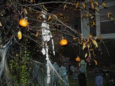 mini jack-o-lanterns hanging from a tree