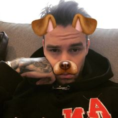 """494.5k Likes, 8,016 Comments - Liam Payne (@liampayne) on Instagram: """"Airport boredom... woof"""""""