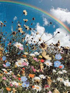Wild - wallpaper for my phone - Blumen Nature Aesthetic, Flower Aesthetic, Aesthetic Vintage, Rainbow Aesthetic, Spring Aesthetic, Scenery Wallpaper, Wallpaper Backgrounds, Nature Wallpaper, Wallpaper Art