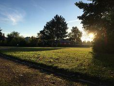 Morgenstund hat Gold im Mund   #landscape #sunrise #sonne #licht #light #sunlight #morning #morningwalk #morningsun #sunday #sunnyday #beautiful #landschaft #soschönistdeutschland #travel #like #follow #instalove