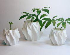 Geometrisch Icosahedron plantenbakje, gebruik dit mooie plantenbakje ...