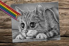 Wouldn't this adorable Kitten be so fun to color? Hand drawn in classic grayscale, this coloring page is the perfect way to relax, stay creative and even hone your artistic skill! See more printable coloring pages @ ArtistryByLisaMarie.Etsy.com