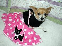 The Pink Chihuahua Skirt comes in 5 sizes by DownUnderDogDesigns, $55.00