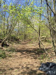 Serpentine Commons #statenisland #park #trails #stapleton