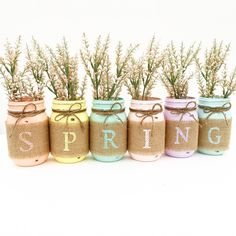 Spring Mason Jar Set Spring Mason Jars Easter Decor Pastel Decor... ($40) ❤ liked on Polyvore featuring home, home decor, filler, backgrounds, home & living, home décor, silver, colored ball jars, owl home decor and ball jars