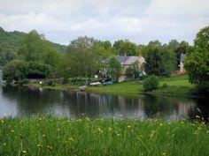 Lago di Vassivière: Erbe e fiori selvatici in primo piano, lago artificiale, a terra, case e alberi - France-Voyage.com