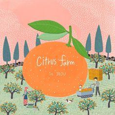 #winter #illustration #illust #landscape #jeju #korea #tangerine #mandarin #citrus #harvest #farm #Leehyunmi