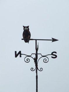 Owl weather vane Owl weather vane Orford Suffolk.