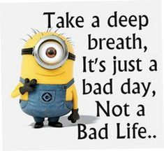 Today 25 Minion Quotes