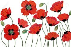 Watercolor Poppies, Watercolor Cards, Red Poppies, Abstract Watercolor, Poppy Drawing, Floral Drawing, Poppy Images, Flower Drawing Tutorials, Lesage