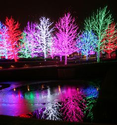 lights in OKC