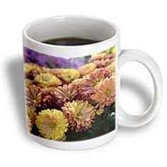 ($14.99) Peach and Yellow Mums- Flowers- Floral Photography - 15oz Mug From 3dRose LLC