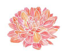 Dahlia Flower Watercolor Illustration Print - 5x7. $10.00, via Etsy.