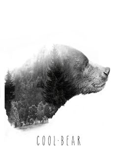 6ee3b065 26 Best Cool Bear - Official T-Shirts | #FeartheBear images in 2014 ...