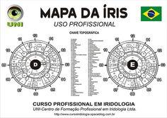 Blog iridólogo: CURSO DE FORMACIÓN EN SUPLEMENTOS Iridología profesional para Iridólogos