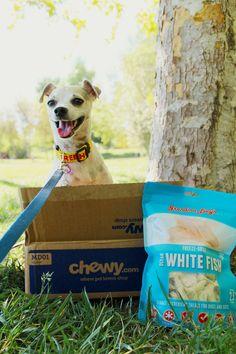 Happy reviews @grandmalucys healthy dog treats from @chewy