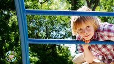 Consortium for Children and Families, by CCF,Sheffield       : Supporting the interests of children and their families