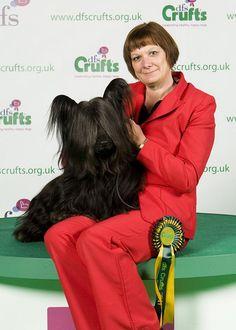 Crufts 2011 BOB Skye. I l;ove Skye Terriers!