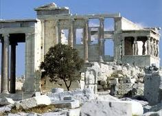 The Sacred Olive Tree, located by the west porch of the Erechtheion, Athenian Acropolis Beautiful Islands, Beautiful Places, Ithaca Greece, Athens Greece, Acropolis, Parthenon, Olive Tree, Greece Travel, Ancient Greece