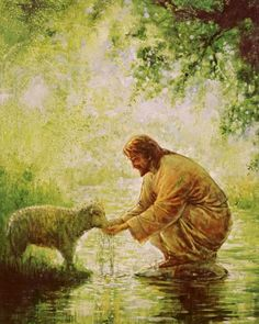 """This is so beautiful the thought of Jesus, giving us his sheep cool water. Great painting, lots of oil on canvas by Yongsung Kim. """"Beside still waters"""" Jesus Pastor, Holy Art, Site Art, Beside Still Waters, Première Communion, Pictures Of Jesus Christ, Jesus Christus, Lds Art, Jesus Painting"""