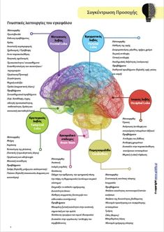 Frontal Lobe, Psychology, Knowledge, Teaching, Education, School, Drown, Curiosity, Autism