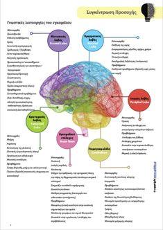 ΣΥΓΚΕΝΤΡΩΣΗ ΠΡΟΣΟΧΗΣ | Στρατηγικές Παρέμβασης για την ενίσχυσή της - Upbility.gr Frontal Lobe, Psychology, Knowledge, Teaching, Education, School, Drown, Curiosity, Autism