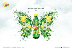 Lipton Ice Tea Poland 2011 + KV on Behance