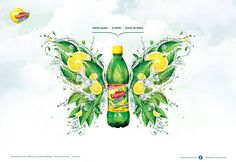 Lipton Ice Tea Poland 2011 + KV on Behance