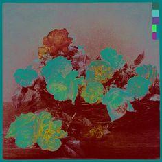 Peter Saville Power_Corruption_and_Lies_New_Order_album_cover__Peter_Saville___jpg_610x610_q85.jpg 500×500 pixels