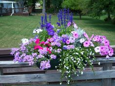 Deck railing flower box with assorted flowers.