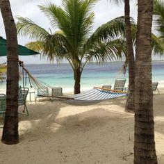 Paradise- Bonaire