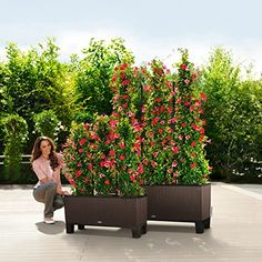 This innovative planter features 3 independent liners with water reservoirs…