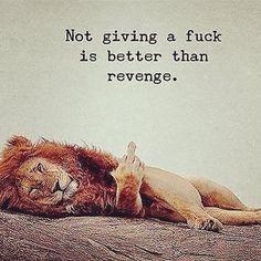 #Lion #Revenge #Funny #Humour #Joke Funny Laugh, Funny Jokes, Funny Humour, Lion And Lioness, Know Thyself, True Nature, Woman Quotes, Live Life, Revenge Funny
