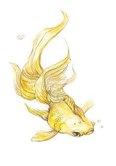 """Puk""- Valeri Petrov on Behance golden fish / wishes / story/ fairy tail"