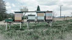 New rural beehive