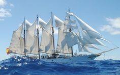 Sailing ship on the wavy sea wallpaper