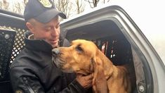 FOX NEWS: Out of the woods: Connecticut police dog found safe after 36 hours in wilderness