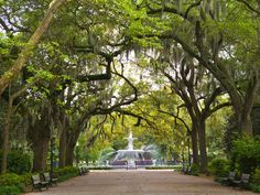 Best for: history buffs looking to revel in the slower pace of life; an affordable city known for its stroll-able gardens and cobblestoned streets; some of the best golf courses in the state; and a thriving arts community (catch a show at the Historic Savannah Theatre, which first opened in 1818) and architecture scene that will keep you well occupied. (Is it Federal, Victorian Regency, Greek and Gothic Revival, or Italianate?)