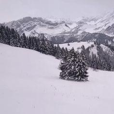 regional train to col de Bretaye #Switzerland #switzerland #train #snow #landscape  #suisse  #mountains