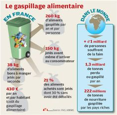 gaspillage alimentaire infographie - Google Search