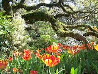 The whimsical Brookgreen Gardens south of Myrtle Beach