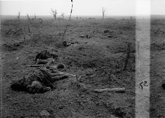 Battle of the Menin Road Ridge. Storming of Zonnebeke by 3rd Division, 20th September 1917. A view of the battlefield, showing casualties of a Highland Regiment.