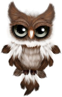 Pin this post and go to the website. Cute Fantasy Creatures, Cute Creatures, Cute Animal Drawings, Cute Drawings, Cute Owl Drawing, Owl Bird, Pet Birds, Cute Cartoon Animals, Cute Animals