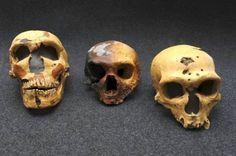 Encuentran nuevos fósiles que traerían abajo la teoría de la evolución del Homo Sapiens en África hace unos 200.000 y su migración hace hace 60.000 años. Los restos hallados en China y el sudeste de Asia, sugerirían nuestros antepasados no salieron de África en el momento que se estimaba, sino que habitaron estos lugares mucho antes.. http://visionannuk.blogspot.com.es/2014/08/homo-sapiens-pudieron-migrar-mucho.html