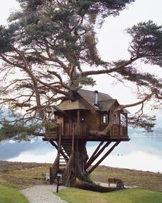Tree house, in Scotland: Need to visit this lodge so I can dine in the tree house. Cool Tree Houses, Tree House Designs, Tree Tops, In The Tree, Play Houses, Cave Houses, Dream Houses, My Dream Home, Rustic Homes
