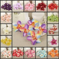 CYNDIE Hot Sale New 50 8cm Artificial Silk Orchid Flower Head Home Wedding Party Decor Favors FH54 Colorized