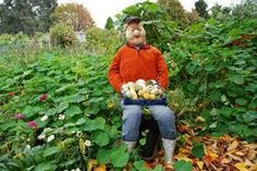 Image result for allotment