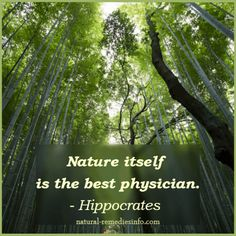 Nature itself is the best physician - Hippocates